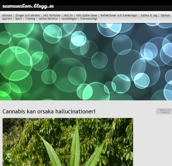 bloggare-spice-cannabis